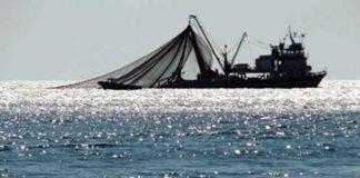 ФСБ Росії затримала сім суден в Азовському морі - today.ua