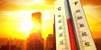 Аномальная жара вызвала нехватку овощей в Европе - today.ua