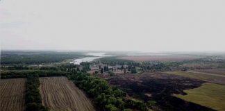 Возле Кривого Рога произошла экологическая катастрофа - today.ua
