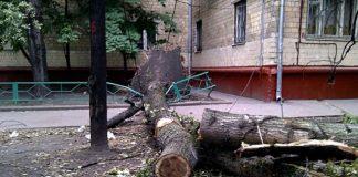 На Україну насувається шторм: рятувальники зробили попередження - today.ua