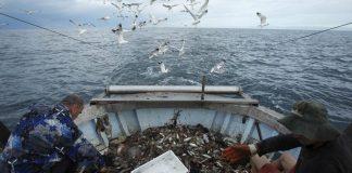 """Російське ФСБ затримала українських рибалок, які причалили """"миритися"""" - today.ua"""