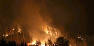 Уровень пожарной опасности на востоке Украины растет — синоптики - today.ua