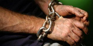 """32 людини визволили з трудового рабства на Прикарпатті (фото)"""" - today.ua"""