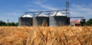 Україна експортувала майже 7 млн тонн зернових - today.ua