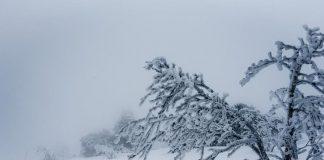 Українські Карпати замітає снігом - today.ua