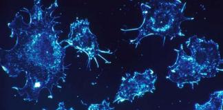 Вчені розкрили новий спосіб знищення раку - today.ua