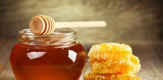 Україна серед лідерів по виробництву меду - today.ua