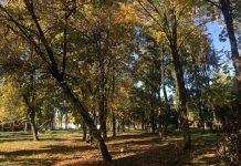 На українців очікує суха і сонячна погода - today.ua