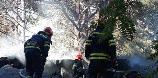 У черкаському зоопарку сталася пожежа (фото) - today.ua