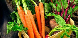 Борщ подорожал: цена на овощной набор побила очередной рекорд (видео) - today.ua