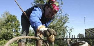 Два популярних серед українців продукти значно подорожчають - today.ua