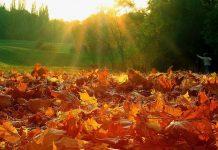 7 ноября: какой сегодня праздник и что нельзя делать - today.ua