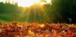 """7 листопада: яке сьогодні свято і що не можна робити"""" - today.ua"""
