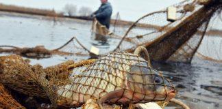 Скандал в Азовському морі: подробиці українсько-російських переговорів - today.ua