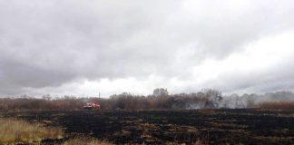На Черниговщине горят более 3 гектаров торфяников - today.ua