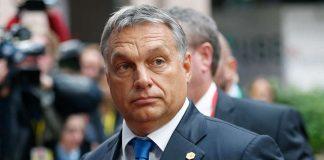 Угорщина заявила про неможливість домовленостей з українською владою - today.ua