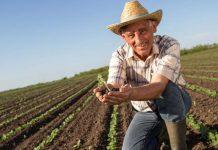 За українськими фермерами стежитимуть через супутники - today.ua