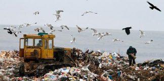 Штрафы за загрязнение природы могуть увеличить в 100 раз — министр екологии - today.ua