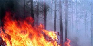 """Донбасс находится на пороге экологической катастрофы - ООН """" - today.ua"""