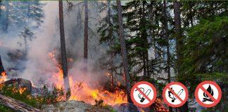 В Украине объявлена чрезвычайная пожарная опасность - today.ua
