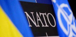 """НАТО не признает """"выборы"""" на Донбассе - today.ua"""