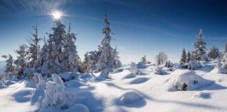 Київські туристи заблукали у Карпатських горах - today.ua