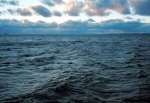 Росіяни затримали естонське судно у Балтійському морі - today.ua