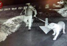 Боксер Очеретяний може отримати за вбивство лише умовний термін, - ЗМІ - today.ua