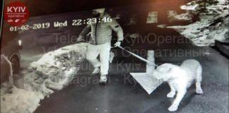 У Києві чоловік з собакою з одного удару вбив 26-річного хлопця - today.ua