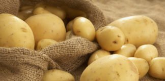 В Україні вдруге за місяць зросли ціни на картоплю - today.ua