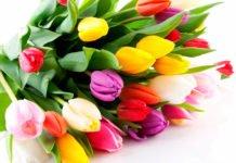 ТОП-5 найгірших подарунків жінкам на 8 березня - today.ua