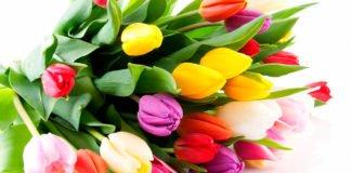 ТОП-5 худших подарков женщинам на 8 марта - today.ua