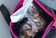 Контрабандист намагався вивезти з України раритетну монету вартістю 1,2 млн грн - today.ua