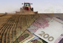 Уряд Гройсмана збільшив розмір субсидії фермерським господарствам - today.ua