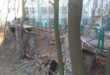У Києві обвалився пішохідний міст: з'явилося фото - today.ua