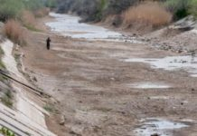 У Криму стурбовані новою екологічною катастрофою - today.ua