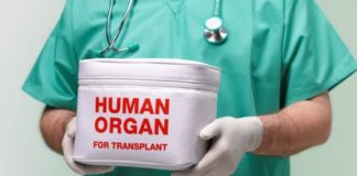 "Верховна Рада ухвалила законопроект про трансплантацію"" - today.ua"