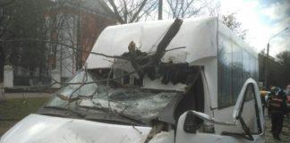 В Николаеве на маршрутку упало дерево: пострадали дети - today.ua