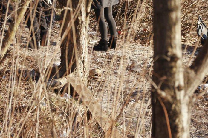У Києві на узбережжі Дніпра знайшли череп людини - today.ua