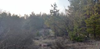 """На Харківщині біля цвинтаря знайшли тіло вбитого солдата-контрактника"""" - today.ua"""