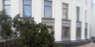 Ялина впала на Верховну Раду в Києві - today.ua