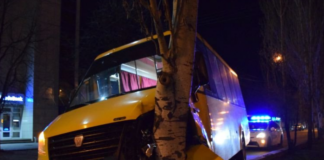 В Николаеве водитель маршрутки потерял сознание за рулем и въехал в дерево - today.ua