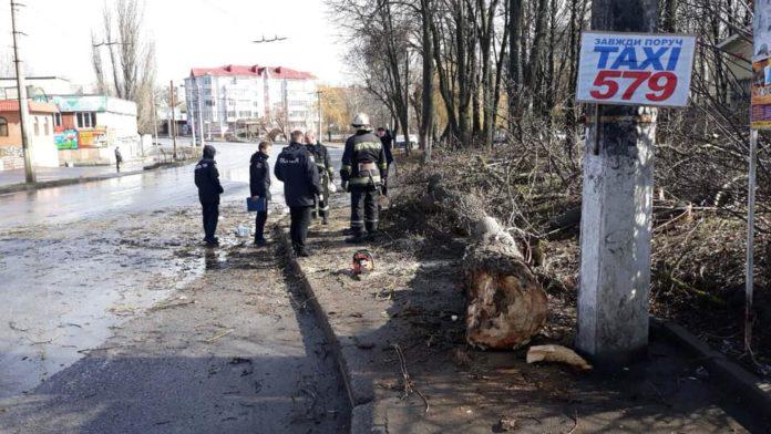 Жертвою негоди в Україні стала 11-річна дівчинка - today.ua