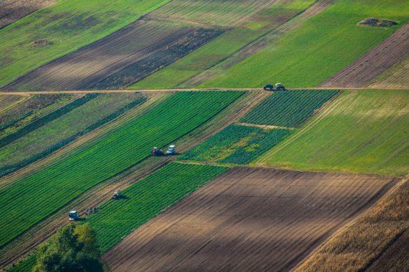 Рынок земли откроется не для всех: какие участки не разрешат продавать - today.ua