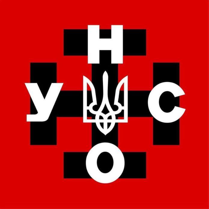 В УНА-УНСО розповіли, кого підтримають у другому турі виборів - today.ua