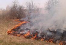На Чернігівщині побили МНСників, які гасили пожежу - today.ua