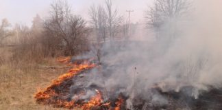 На Черниговщине избили МЧСников, тушивших пожар - today.ua