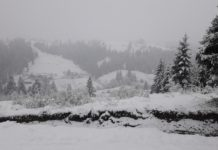 Карпати засипало снігом: опубліковано фото і відео - today.ua