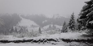 """Карпати засипало снігом: опубліковано фото і відео"""" - today.ua"""