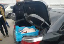 Під Києвом жартівники з іграшковим автоматом пограбували підприємця - today.ua